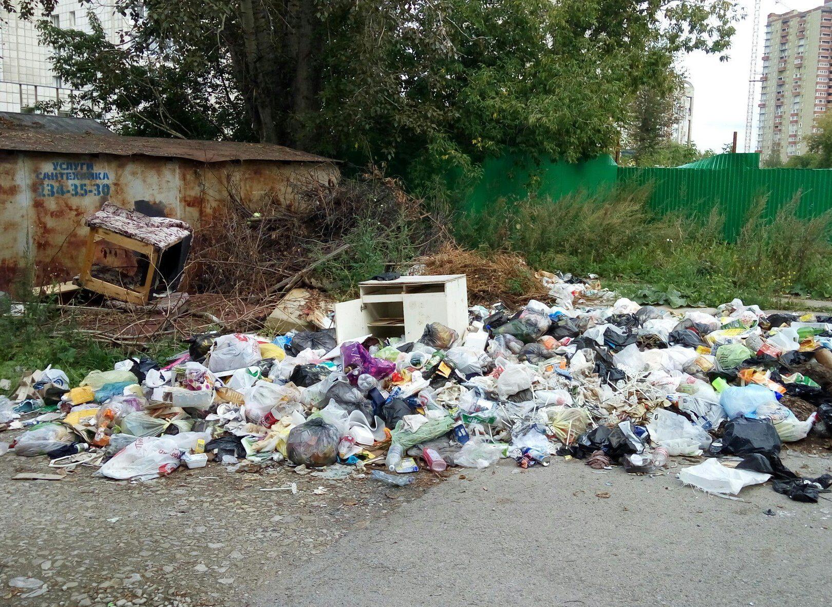 Регоператор обещает мусорный коллапс