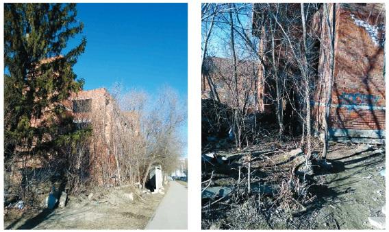 Тольяттинские «заброшенки» не красят город